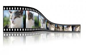 Videos umwandeln - Quelle: pixabay.com